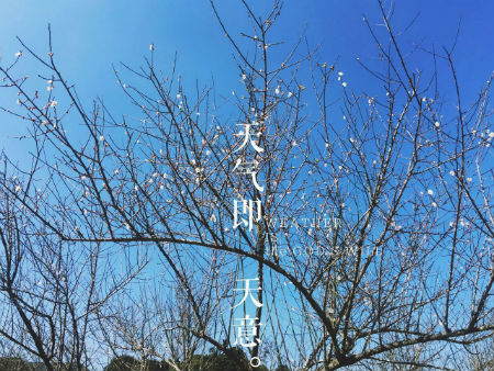 在深圳,周末周边游去哪儿