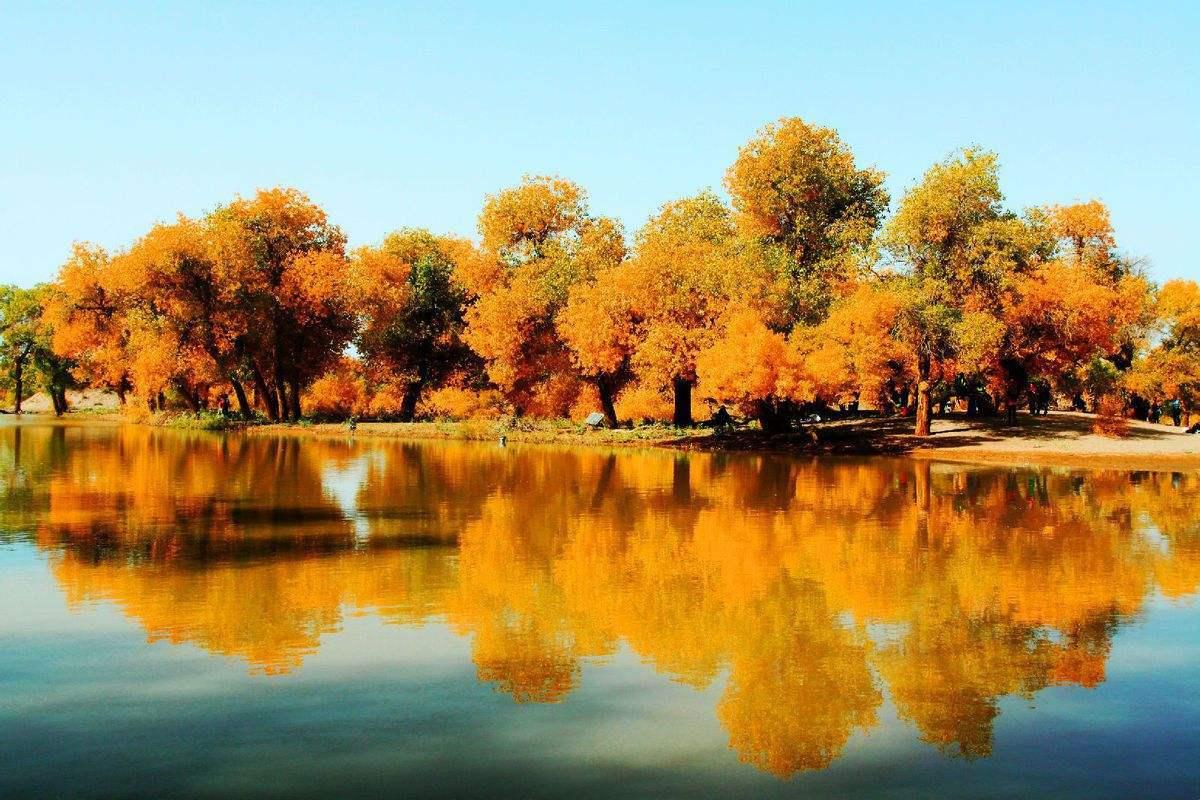 国庆假期哪些景区人最多?北京故宫、杭州西湖、上海外滩位列前三